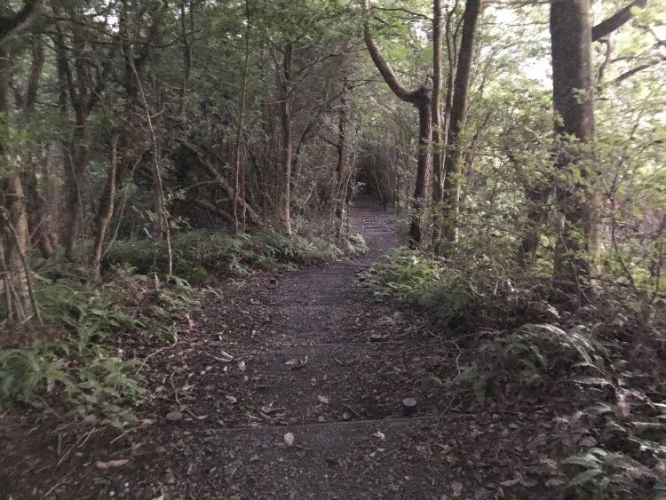 牟礼山展望台から松が丘方面の道