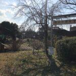 金森湧水公園を訪ねた。豊富な湧水と水車が見どころ。