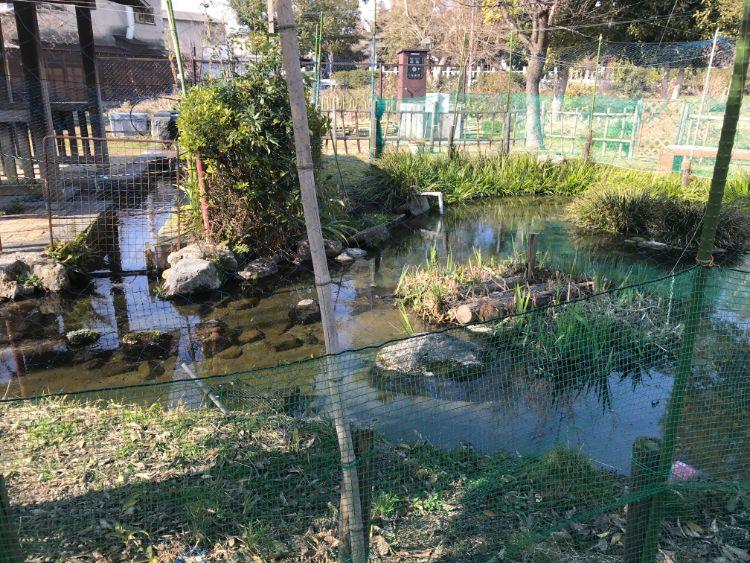 金森湧水公園