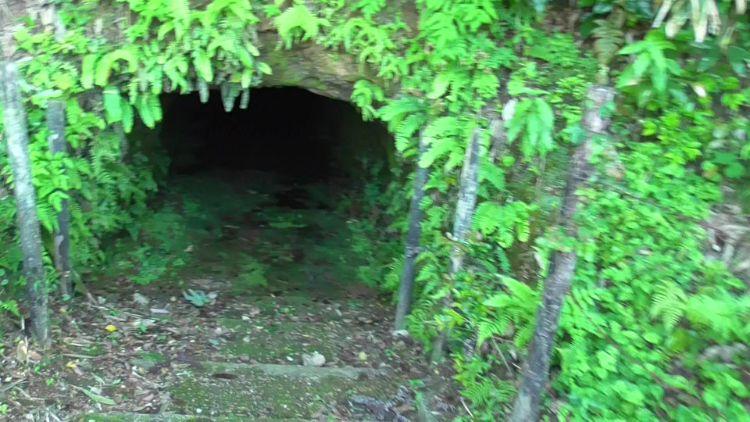 岩脇蒸気機関車避難壕の西側避難壕の北側